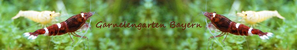 Garnelengarten-Bayern